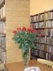 Książka i Róża czyli Brzeskie Dni Książki