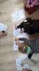 Przedszkolaki z Gużlina w brzeskiej biblioteceJG_UPLOAD_IMAGENAME_SEPARATOR4
